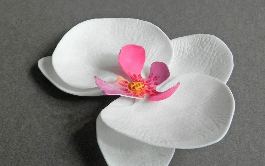 Cómo hacer una orquídea utilizando goma eva, vídeo paso a paso