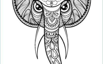 Mandalas con forma animal: Conoce y que tus hijos conozcan su importancia
